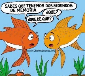 humor grafico peces